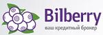 Кредитный брокер Bilberry